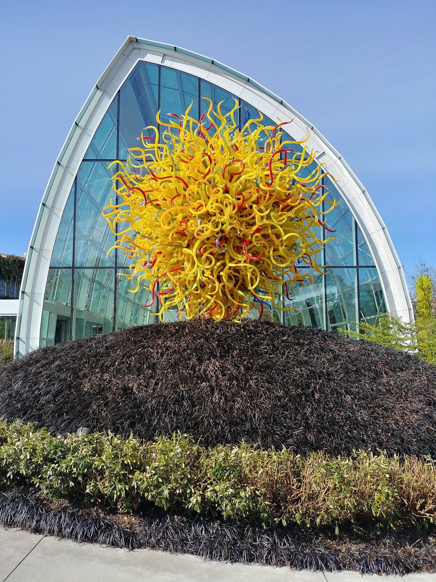 Chihuly Glass and Garden - 101