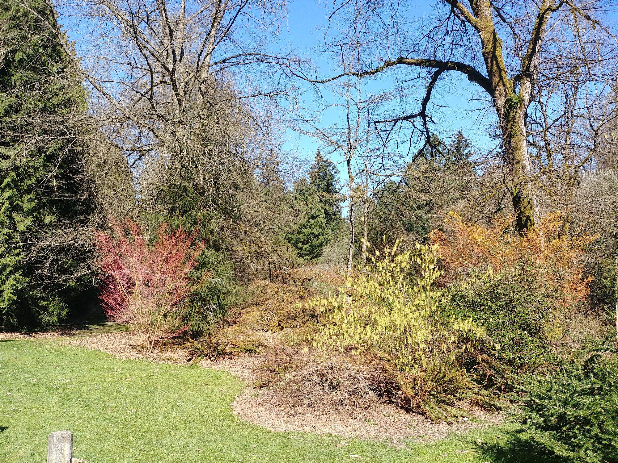 The Arboretum - 26
